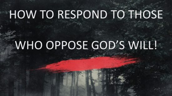 how-to-respond-to-those-who-oppose-gods-will