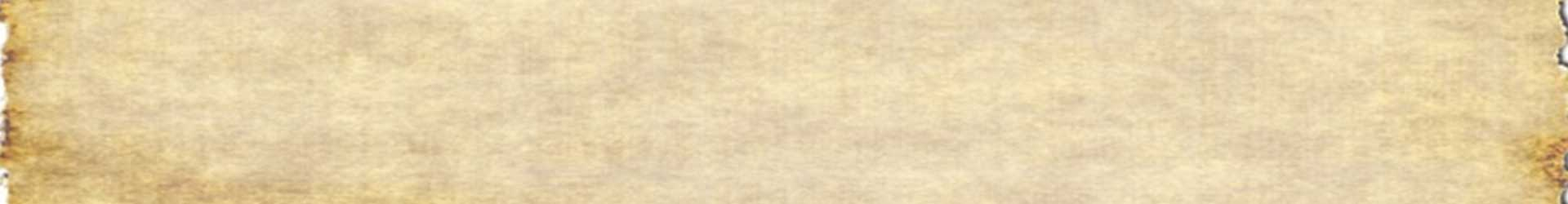 LayerSlider-1920×250-2